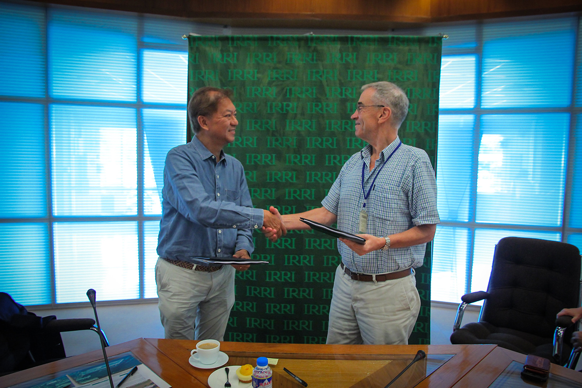 IRRI, Tao Corporation sign pact for the commercialization