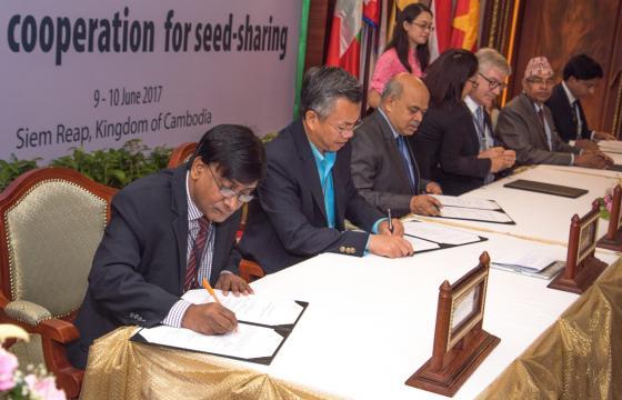 Myanmar | International Rice Research Institute